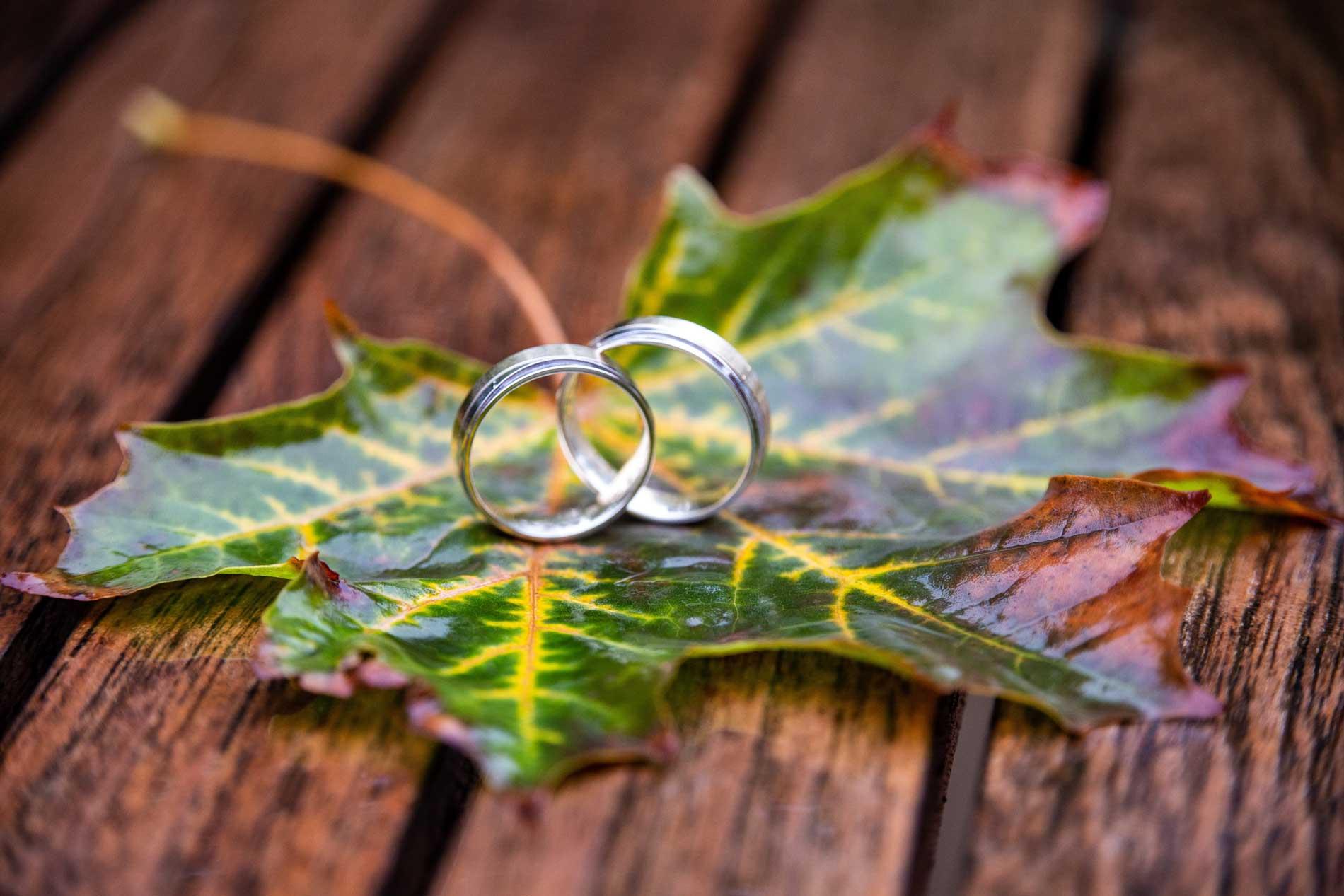Beseelte Momente - Trauringe, Freie Trauung, Hochzeitsritual
