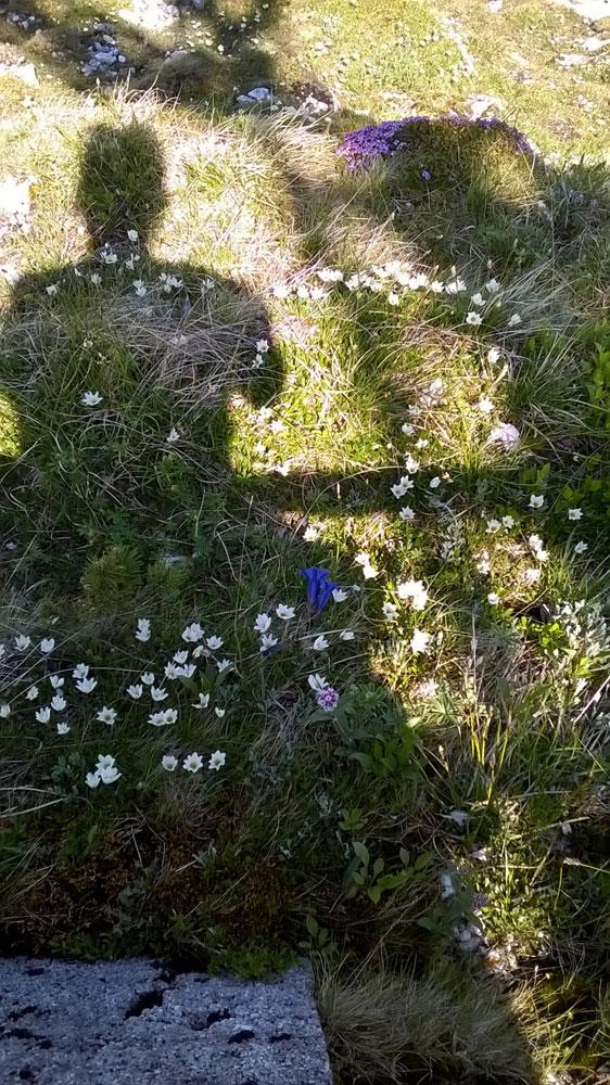Beseelte Momente - Rituale in der Natur