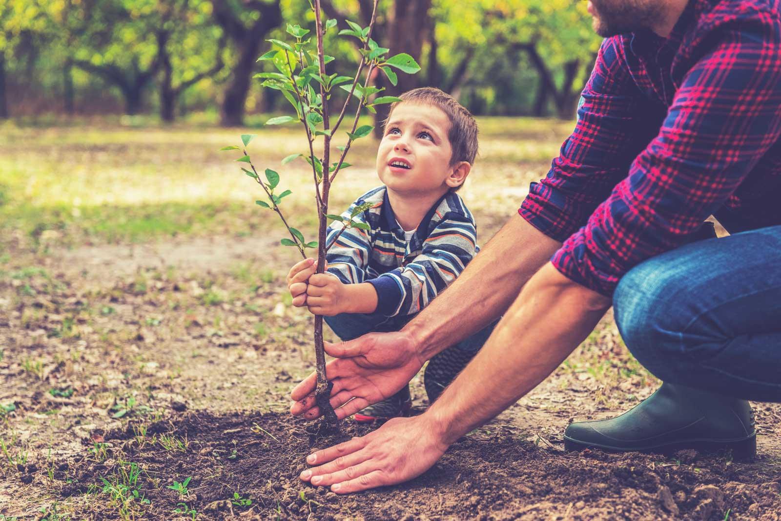Initiationsritual Vater und Sohn pflanzen einen Baum